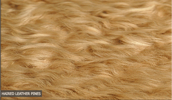 Hair Hide Rugs